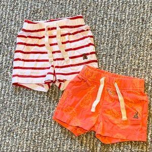 Summer Shorts Bundle - Baby Boy